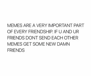 friendship, funny, and memes image