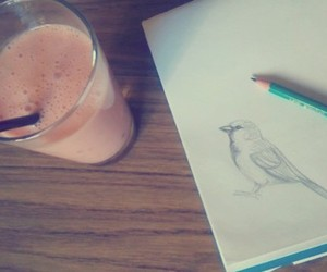 art, bird, and draw image