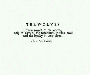 wolf, quotes, and loyalty image