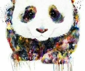 panda, art, and animal image