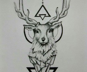 animal, drawing, and tattoo image