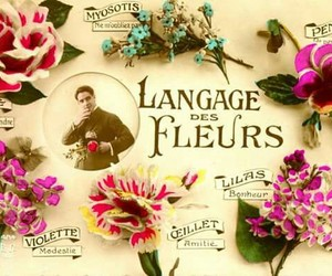 flowers, victorian, and meaning of flowers image