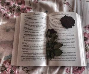 beautiful, book, and dark image