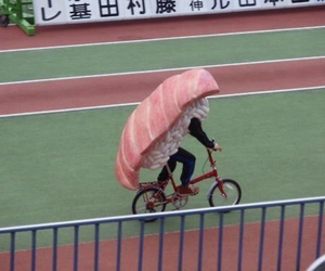 sushi, japan, and bicycle image