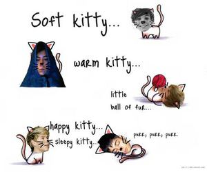 one direction, kitty, and 1d image