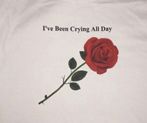 rose, sad, and crying image