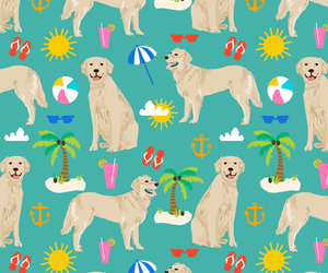 animal, background, and beach image