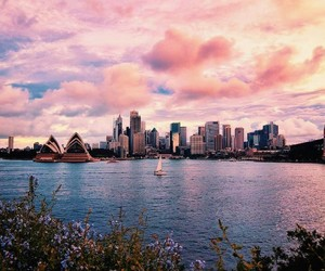australia, city, and harbour image