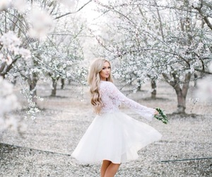 beauty, cherry blossom, and dress image