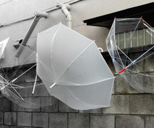 umbrella, pale, and white image