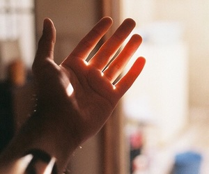 hand, vintage, and light image