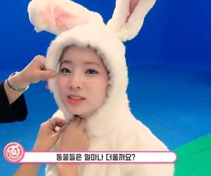 JYP, dahyun, and kpop image