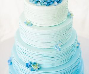 blue, food, and cake image