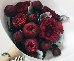 red, love, and flower whi image