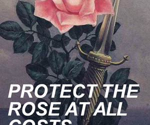 dagger, rose, and larry image