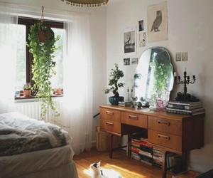 bedroom, room, and cat image