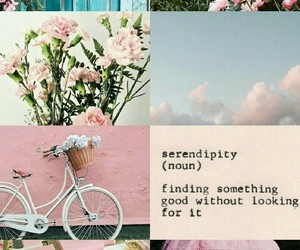 baby pink, flowers, and happy image