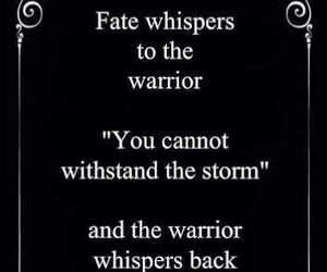 warrior, storm, and fate image
