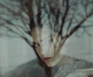 girl, photography, and tree image