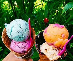 ice cream, summer, and tropical image