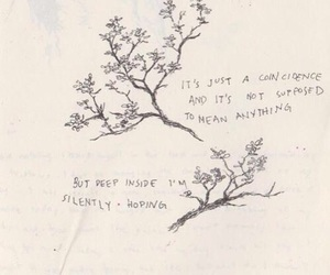 quotes, hope, and flowers image