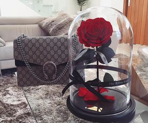 rose, flowers, and bag image