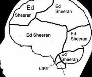 ed sheeran and sheerio image