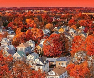 autumn, fall, and boston image