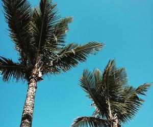 beach, beach day, and blue image