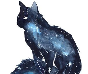 cat, art, and stars image