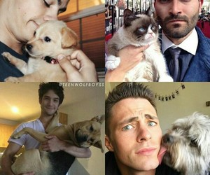 pets, teenwolf, and love image