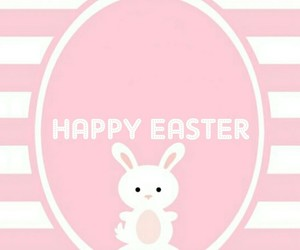 background, bunny, and conejo image