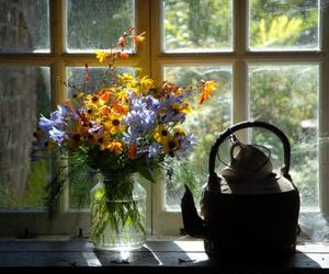 flowers, window, and teapot image