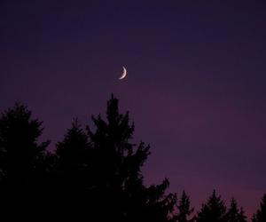 moon, alternative, and dark image