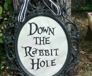 alice in wonderland, rabbit hole, and the white rabbit image