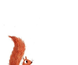 animal, art, and squirrel image