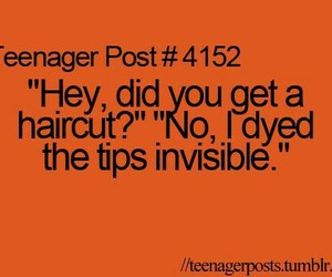funny, invisible, and quotes image