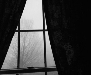 black and white, fog, and sombre image