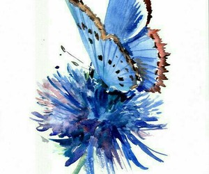 art, butterfly, and inspiration image