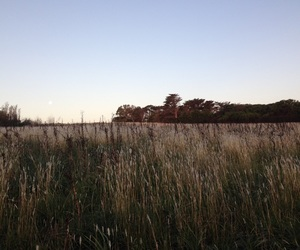 autumn, sun set, and country side image