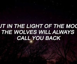 quotes and wolves image