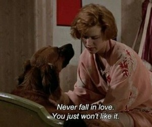 love, dog, and pretty in pink image