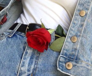 grunge, jeans, and rose image