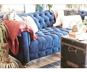 blue, comfort, and couch image