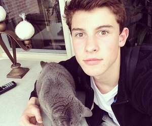 shawn mendes, cat, and shawn image