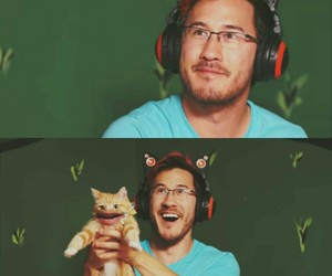 cats, youtube, and markiplier image