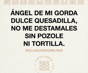 food, funny, and frases image