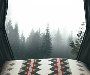 forest, camping, and nature image