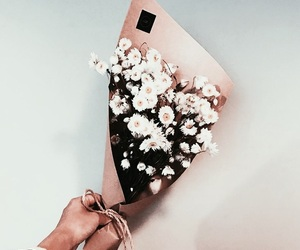 flowers, indie, and tumblr image
