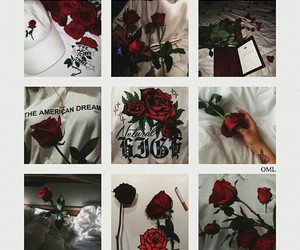 roses and shawn mendes image